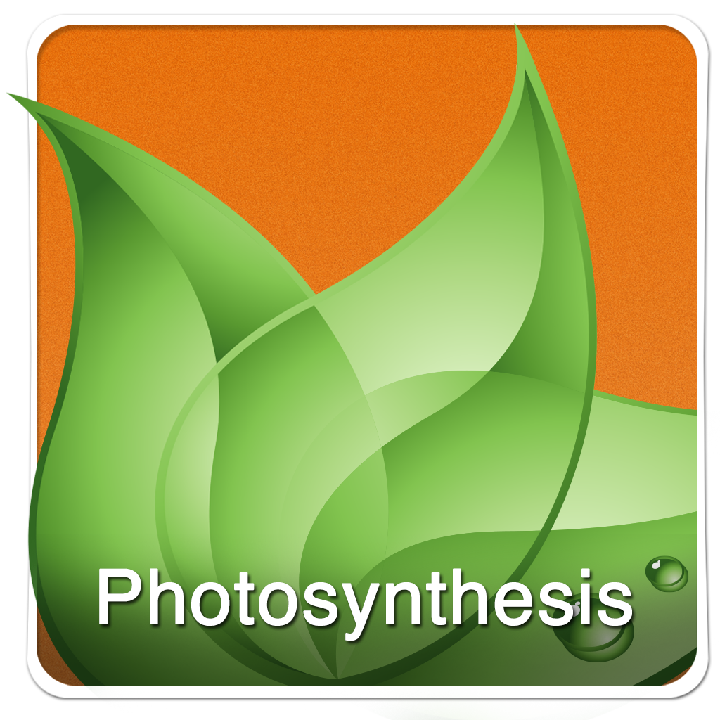 Keywords English: Photosynthesis (English Only)