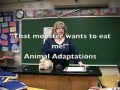 Animal Adaptation There is a monster after me