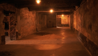 gas-chamber-at-auschwitz - Holocaust Concentration Camps Pictures - The Holocaust - HISTORY.com