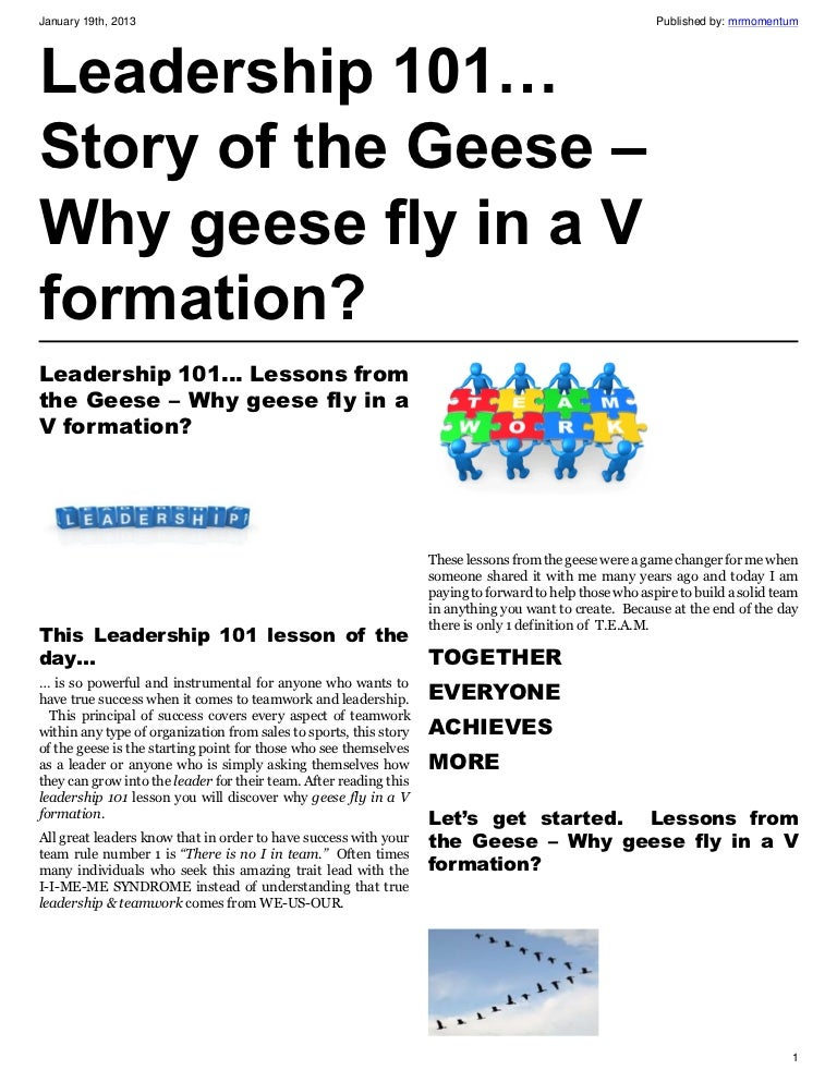 Leadership 101… Story of the Geese – Why geese fly in a V formation?