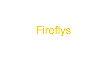 Fireflys | Educreations
