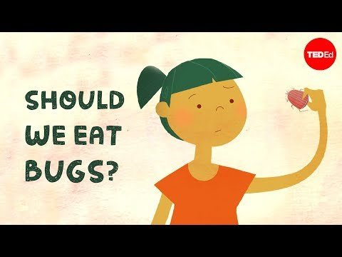 Should we eat bugs? - Emma Bryce