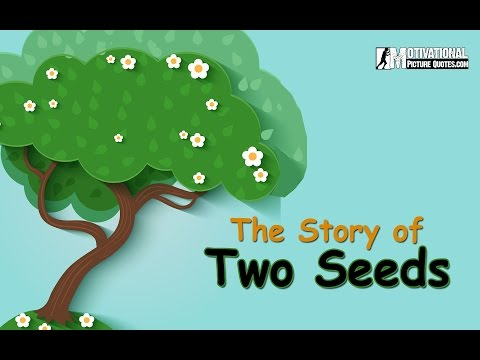 'Motivational Short Story Of Two Seeds -Best Inspirational Story about Positive Thinking for Kids' on ViewPure