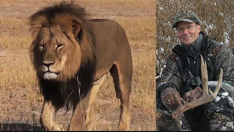 Cecil the Lion: Zimbabwe won't prosecute dentist - CNN.com