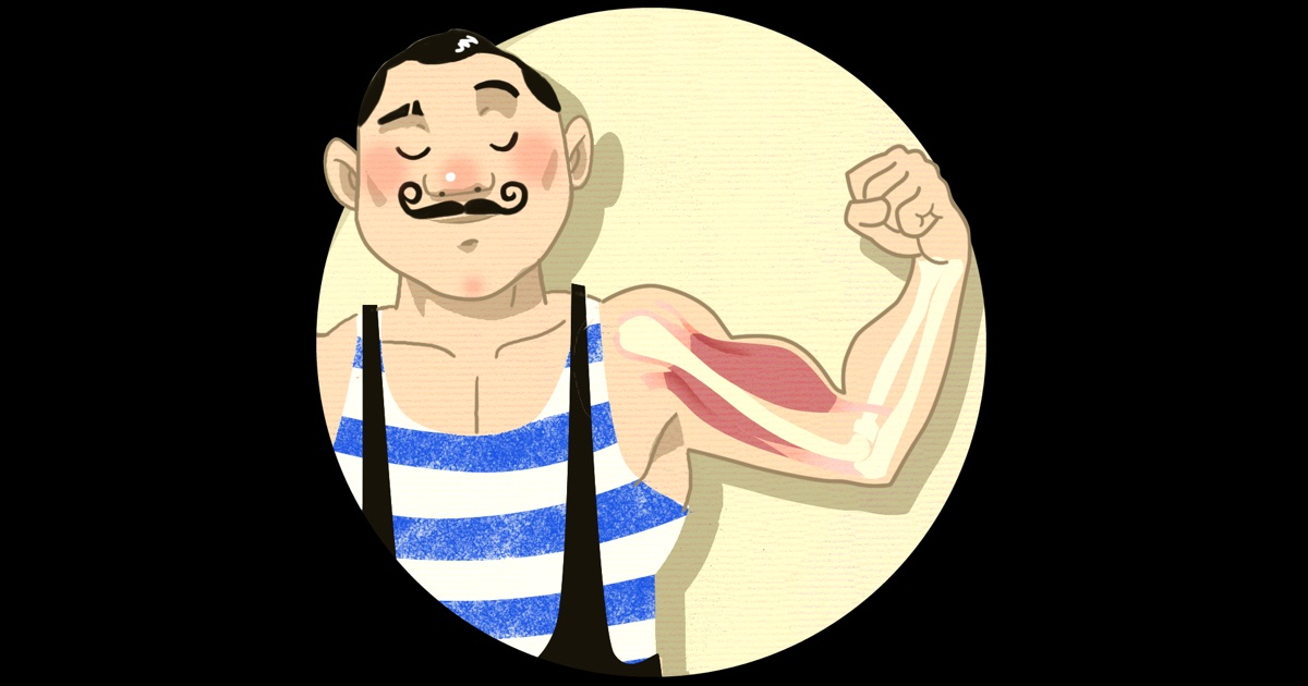 Muscles for Kids on the App Store