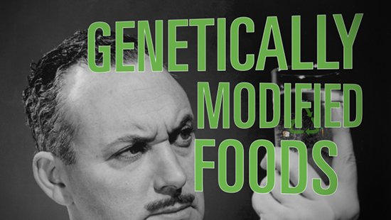Hybrid Foods: Genetically modified foods are full of controversy.
