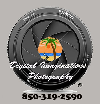 Digital Imaginations Photography