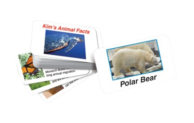 Avery Flash Cards | Avery