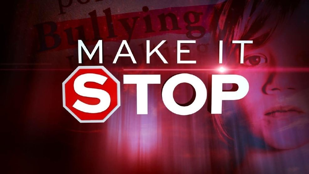 Make It Stop: Cyberbullying pushes some to suicide