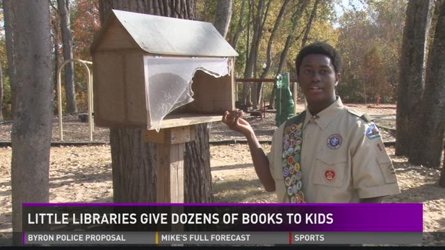 Little libraries give books to kids