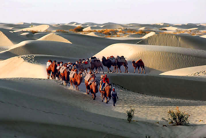http://www.chinatourguide.com/china_photos/Xinjiang/Attractions/silk_road_camel_caravans_carring_goods.jpg