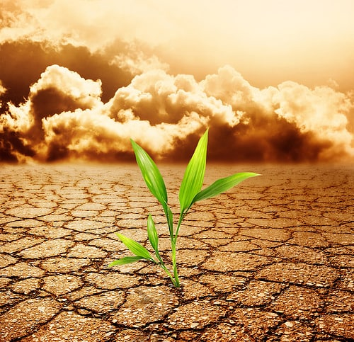 Causes and Effects of Soil Pollution - Conserve Energy Future