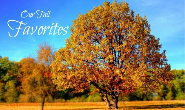 Fall Favorites from Local Families | Rocket City Mom