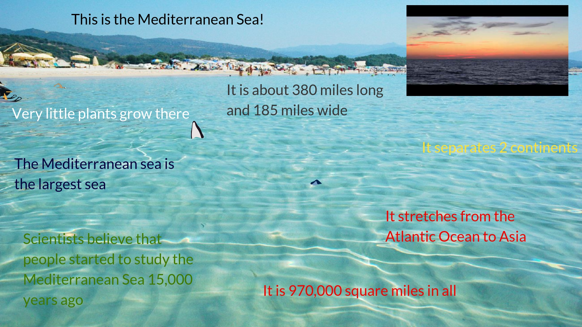 Mediterranean sea by Sandra and Sushanth