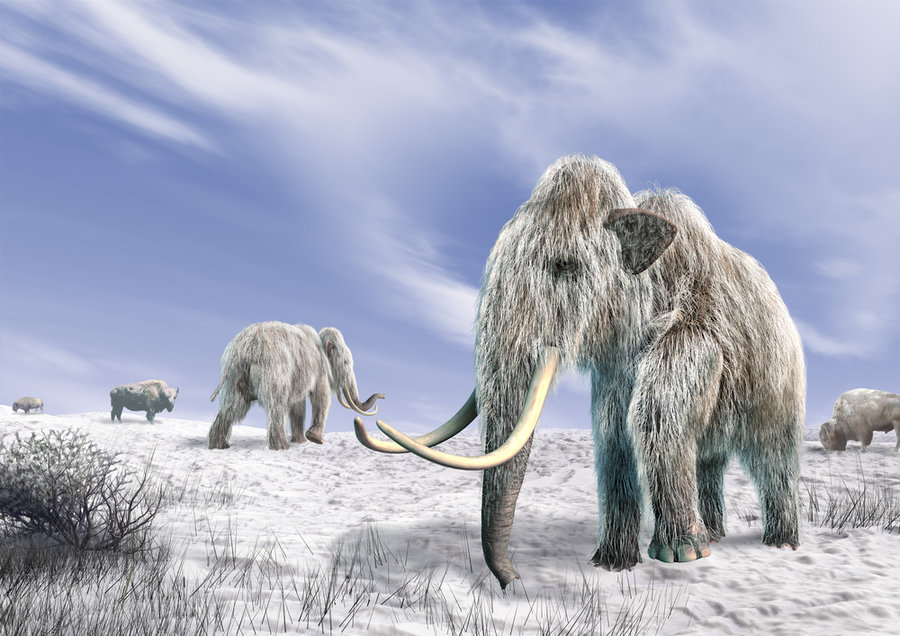 The De-Extinction of the Wooly Mammoth Would Be an Evolutionary Mistake