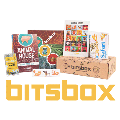 Bitsbox: a new way to introduce kids to computer programming