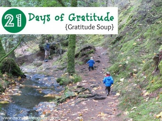 Teaching Children Gratitude {Book & Activity}