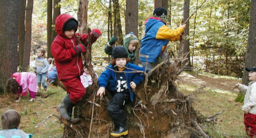 School Children Spend a Day in the Woods Every Week, Rain or Shine