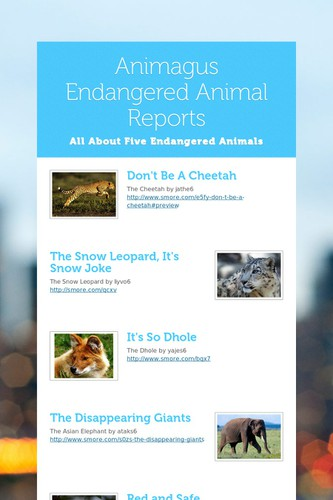 Animagus Endangered Animal Reports