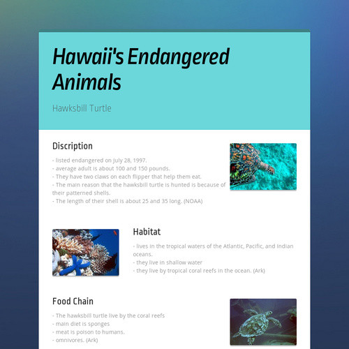 Hawaii's Endangered Animals