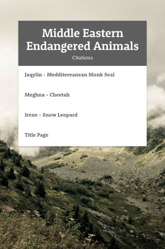 Middle Eastern Endangered Animals
