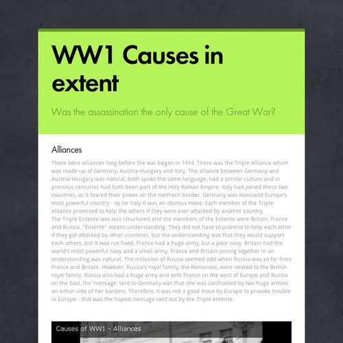 WW1 Causes in extent