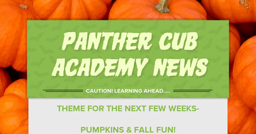 Panther Cub Academy News
