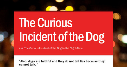 The curious incident of the dog