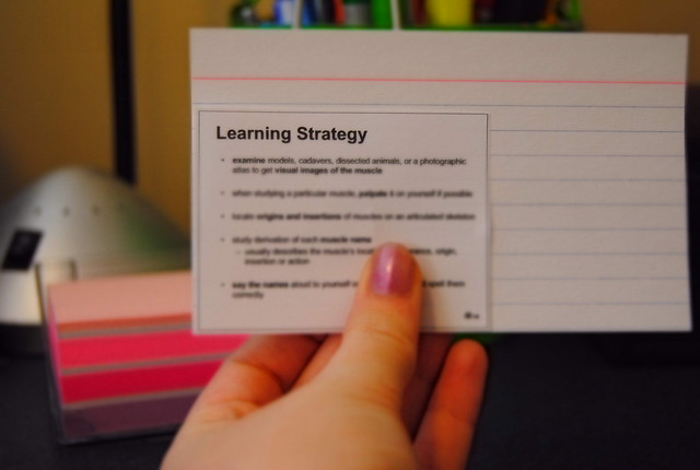 The Best & Most Useful Free Student Hand-Outs Available Online - Help Me Find More