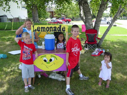 The New Lemonade Stand
