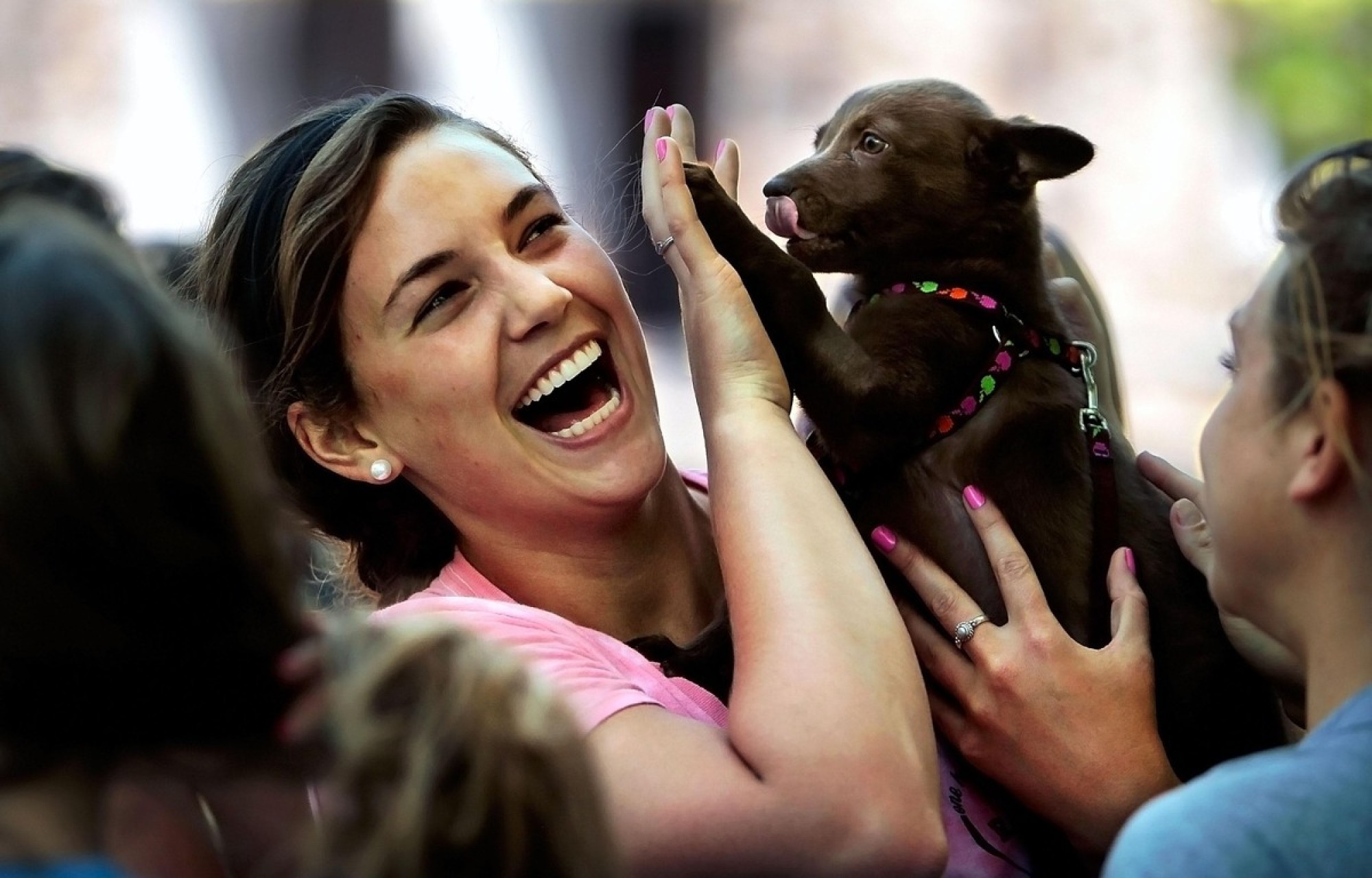 Playing With Dogs At The Shelter And 12 Other Super Fun Ways To Give Back