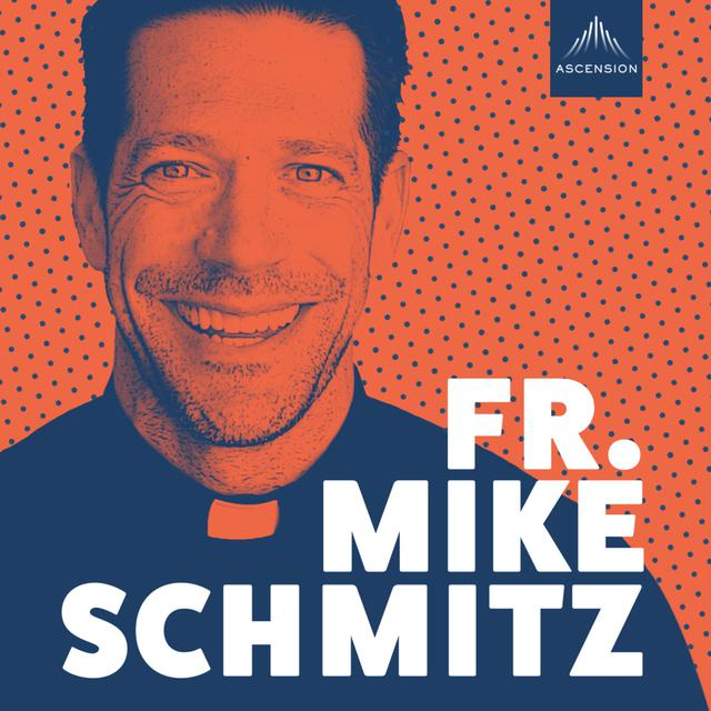 Having Joy in Uncertainty - The Fr. Mike Schmitz Catholic Podcast