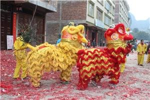 Chinese New Year Activities in Beijing in 2016