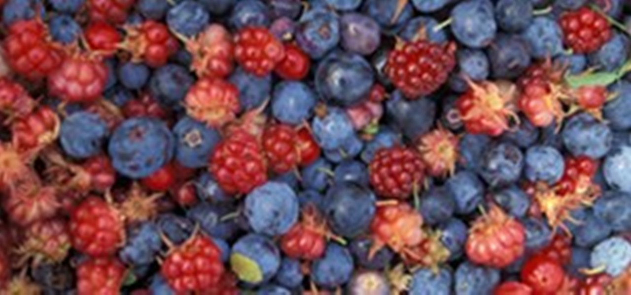 HowTo: Eat Berries in the Wilderness