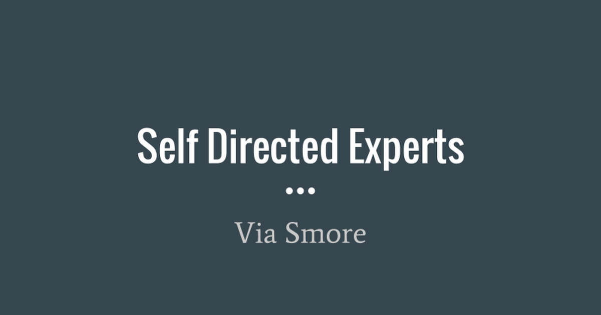 Self Directed Experts