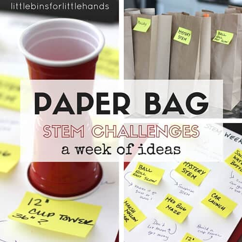 Paper Bag STEM Challenges Week for Kids