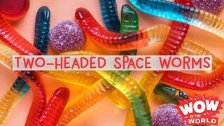 Two-Headed Space Worms
