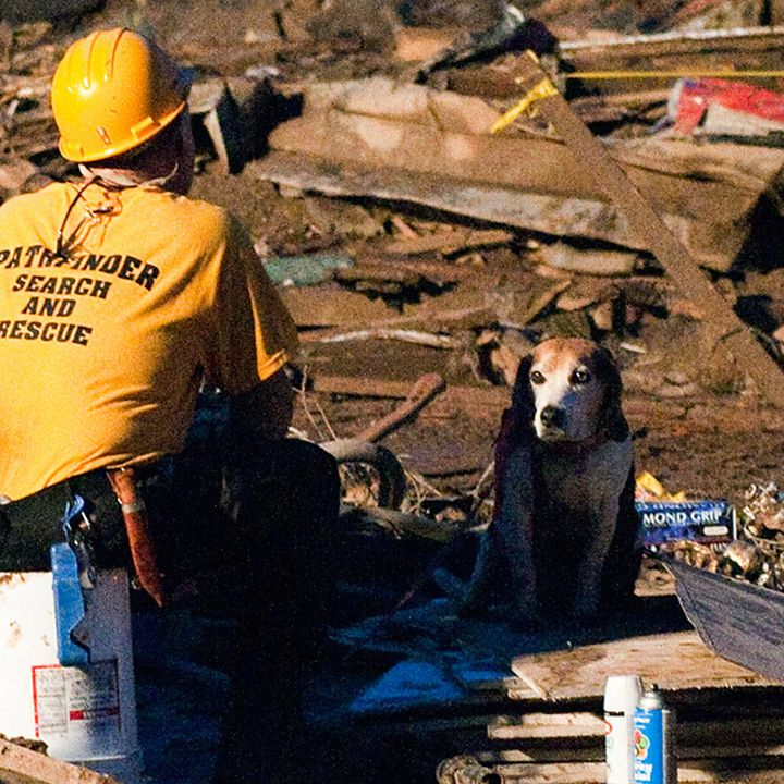 9 Inspiring Stories From the Oklahoma Tornado
