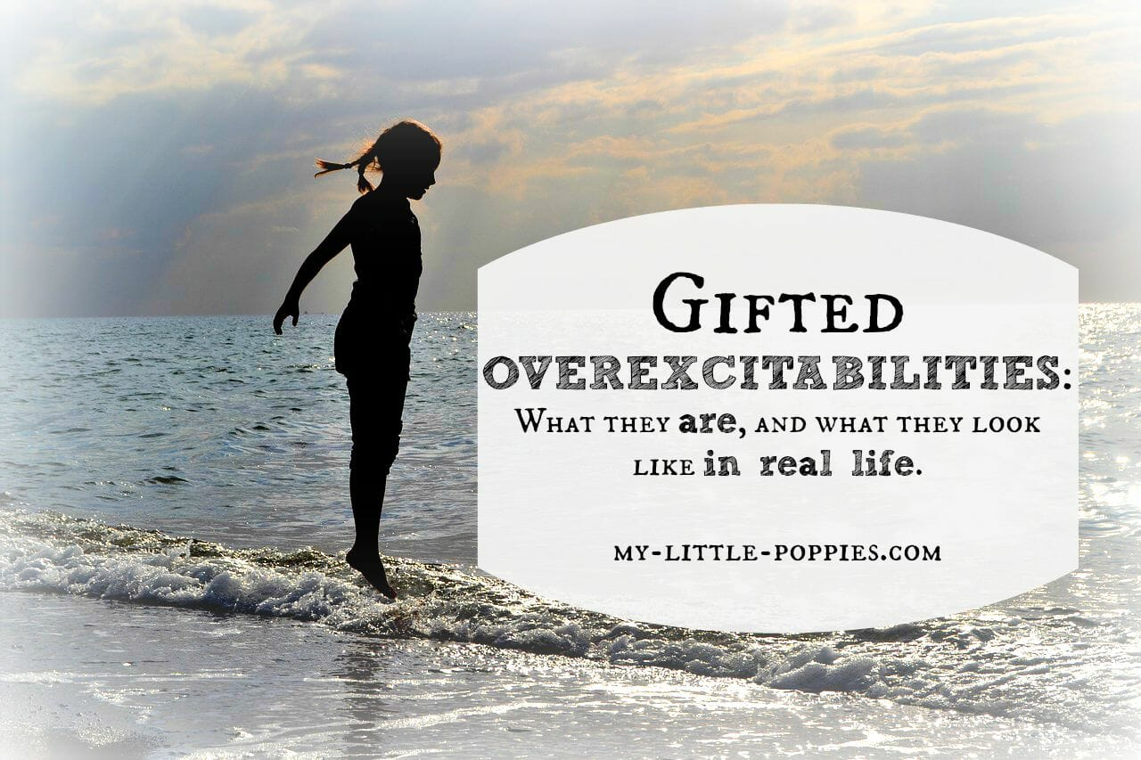 Gifted Overexcitabilities: OEs IRL | My Little Poppies