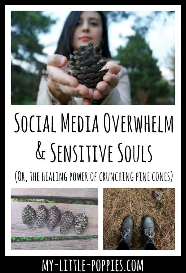 Social Media Overwhelm & Sensitive Souls | My Little Poppies