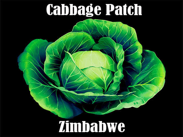 Let's Farm Cabbage!