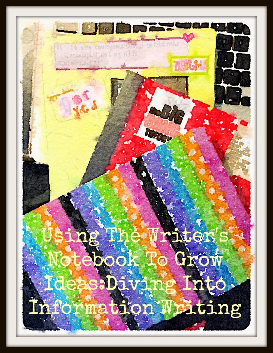 Using The Writer's Notebook To Grow Ideas:Diving Into Information Writing