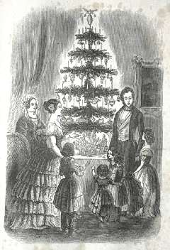 The History of Christmas Trees on whychristmas?com